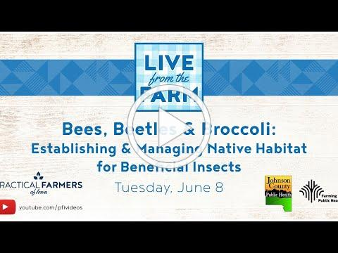 Bees, Beetles & Broccoli: Establishing & Managing Native Habitat for Beneficial Insects