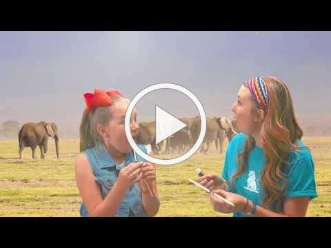 Roar VBS Intro | Group's 2019 Easy VBS