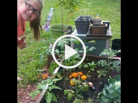 Interview with 9 Year Old Kaelyn about Growing Food