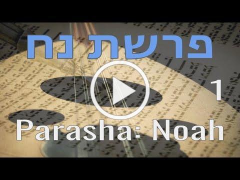 Parasha - Noah 1 : פרשת נח