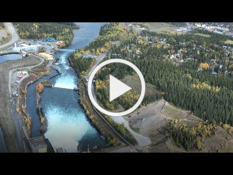 WCS Canada Weston Family Foundation Fellow 2020 William Twardek on Chinook Salmon and Fish Ladders