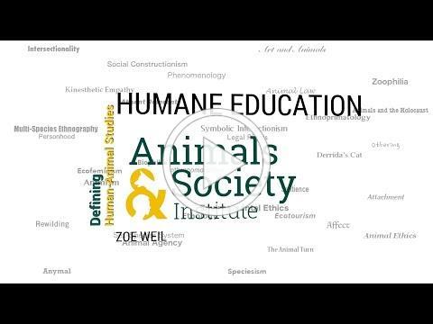 Defining Humane Education with Zoe Weil - ASI's Defining Human-Animal Studies 32