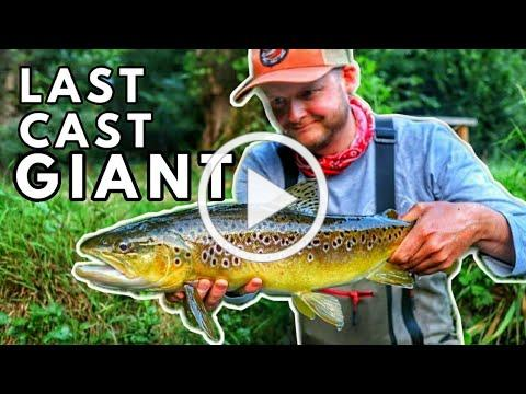 Fly Fishing The River Itchen In England For Brown Trout With Fishing Breaks - Chalkstream Day 2!
