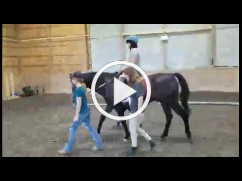 Susan Wilson on Horseback