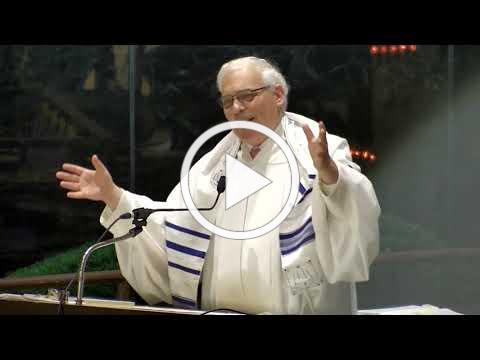 "Kol Nidrei Sermon, 5782, ""A Whale of a Tale"" Joshua Hammerman, Temple Beth El, Stamford, CT"