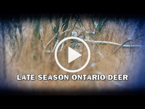 Late Season Ontario Deer (TEASER)