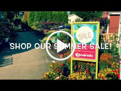 Shop Our Summer Sale