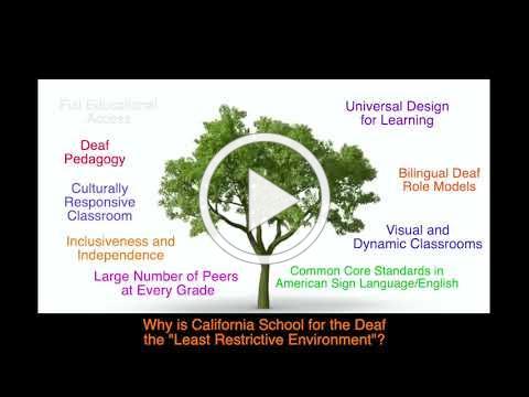 Growing Tree 4 1 english