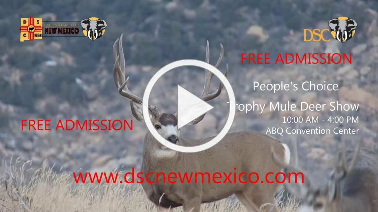 DSC New Mexico People's Choice Trophy Mule Deer Show