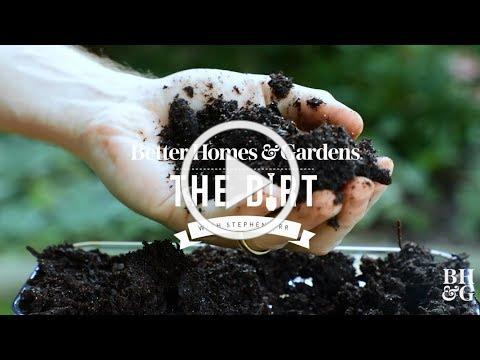 Composting for Beginners | The Dirt | Better Homes & Gardens