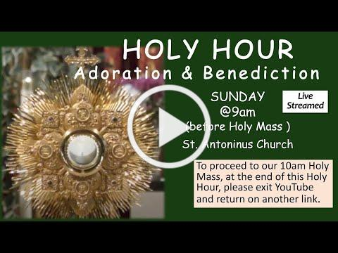 HOLY HOUR . St Antoninus , January 24 2021 at 9 am live streamed