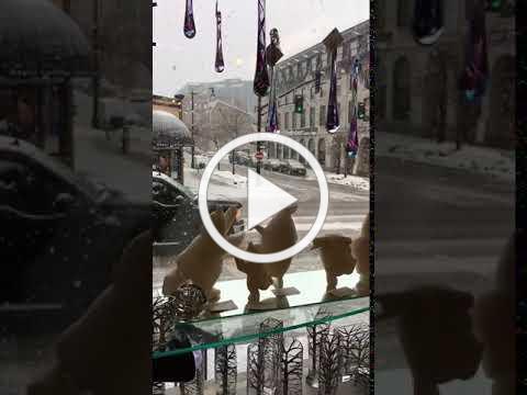Winter in Kingston