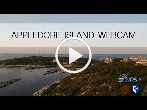 Appledore Island Live