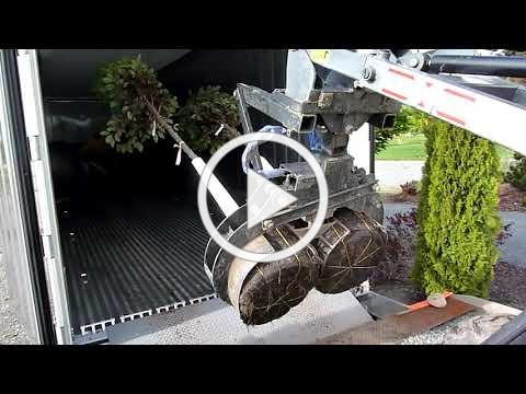 Loading Trees at Urban Forest Nursery
