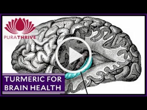 Turmeric & Brain Health: Neurogenesis | PuraTHRIVE- Thomas DeLauer