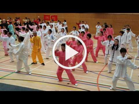 2017 World Tai Chi Day Auckland