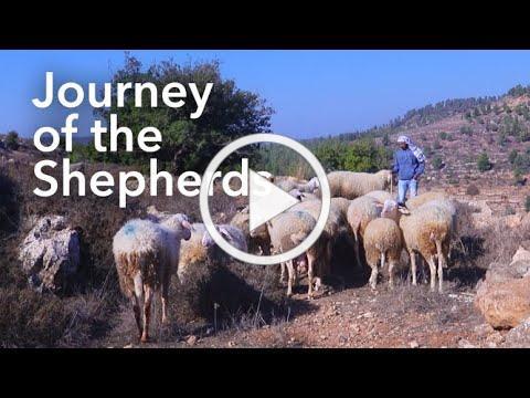 Journey of the Shepherds