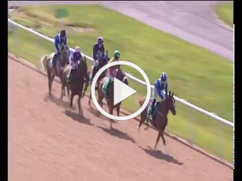 Wolverhampton 10th June - Visit Oman Handicap Stakes 0-85