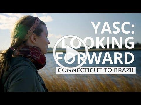 YASC Looking Forward