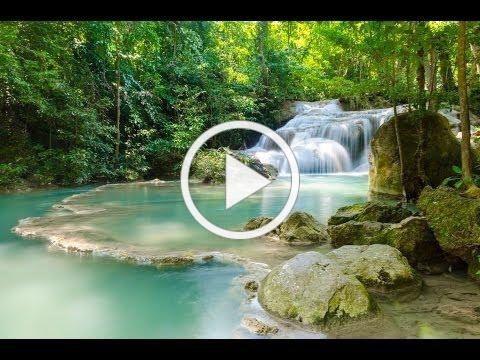 Tree Of Life Spoken Guided Meditation for Grounding relaxation with Theta Binaural Beats