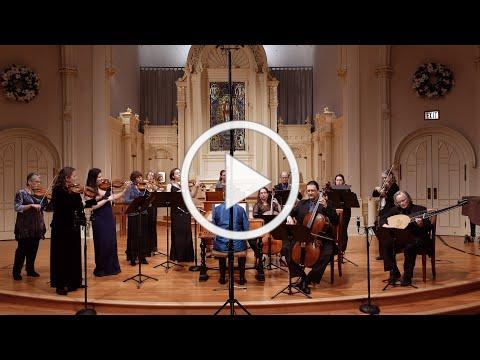 Vivaldi: Cello Concerto in D Minor RV 407 (Full); William Skeen, baroque cello, Voices of Music 4K