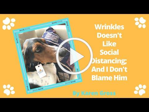 Wrinkles Doesn't Like Social Distancing; I Don't Blame Him book By Karen Gross