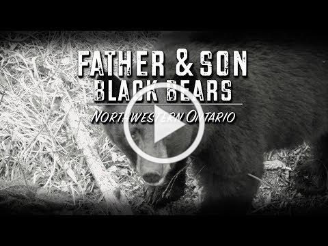 Father & Son Black Bears (TEASER)