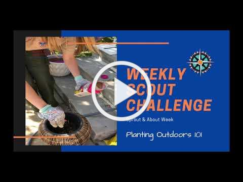 Weekly Scout Challenge w/ Suzie V!