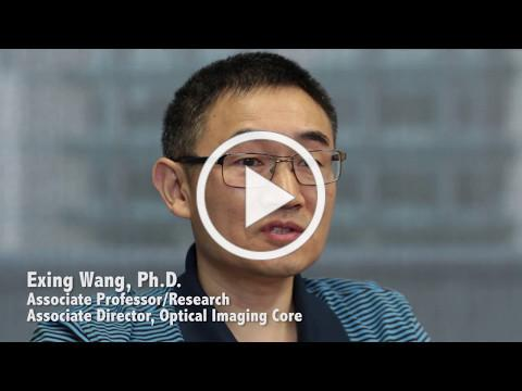 Optical imaging core laboratory offers high-end imaging of living cells and tissue