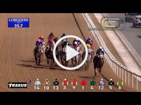 Race 1 Bani Yas Sponsored by Gulf News