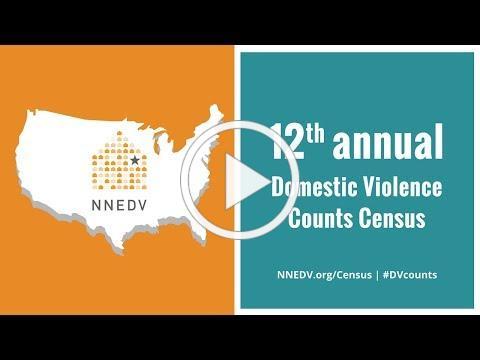 The 12th Annual Domestic Violence Counts Census