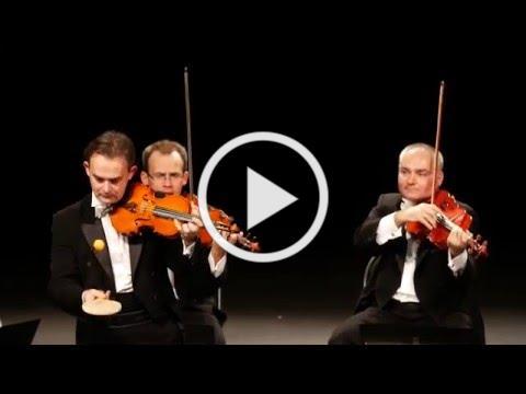 Hilarious PingPong - Mozart Group