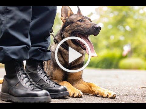 Hometown Foundation Police K-9 Awareness Program