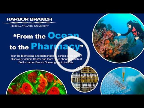 From the Ocean to the Pharmacy at FAU's Harbor Branch