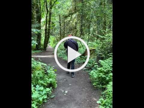 A Walk with Allen