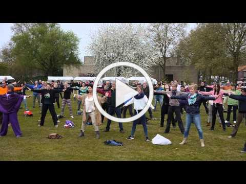 2015 World Tai Chi Qigong Day in Uden The Netherlands