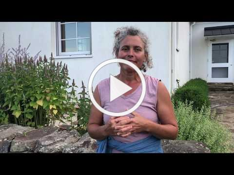 Seed Stories: Jeanette Hart-Mann
