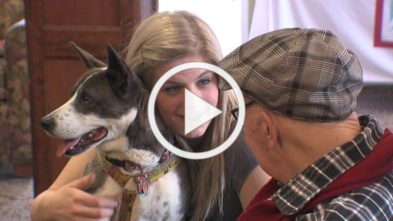 Pet Therapy at Chicago Senior Centers