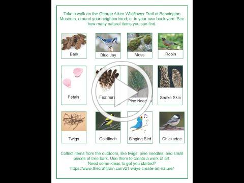 Trail Tails: The Nest that Wren Built