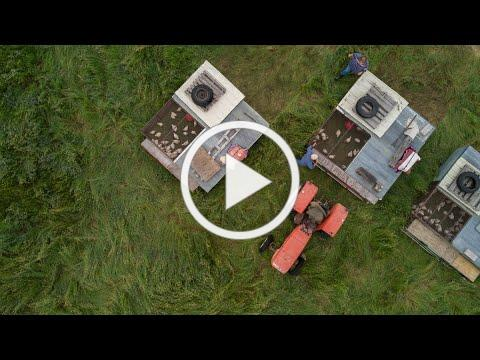Our Amazing Grasslands ~ England Ranch, Midland, SD
