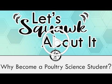 Let's Squawk About It (S2 E1): Why Become a Poultry Science Student?