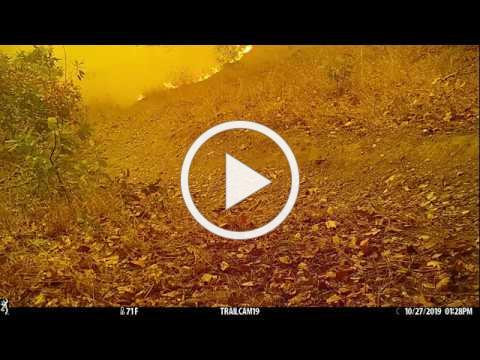 Foothill Regional Park wildfire October 2019
