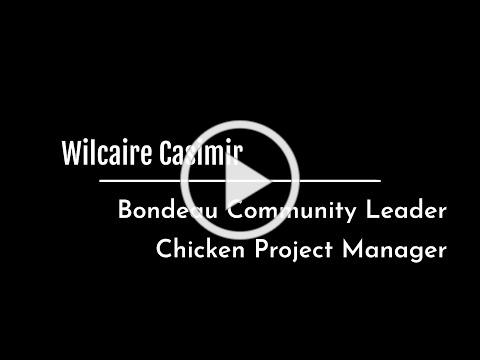 Chicken Broiler Project Manager Wilcaire Casimir