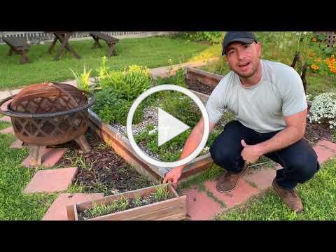 ATPF Board Member Pablo Fernandez Shares Outdoor Garden Tips