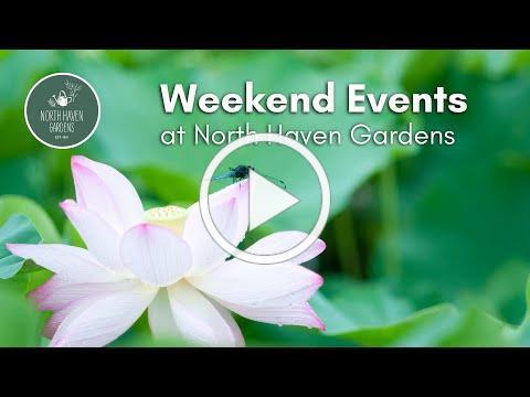 Weekend Events @ NHG