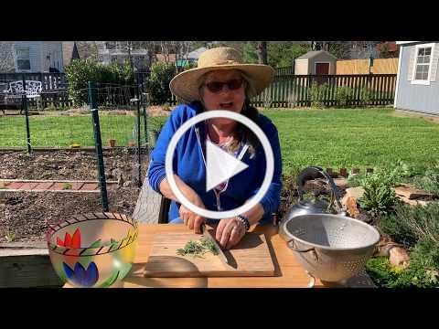 Joan's Herb Garden 2