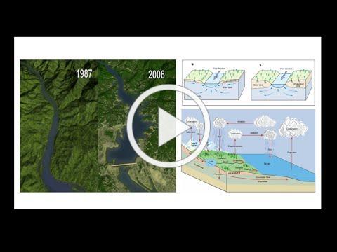 FAU 3MT® Competitor: Skylar Hooler (Geosciences)