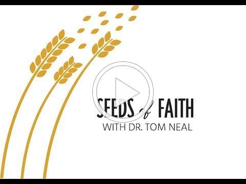 Seeds of Faith: Episode 1