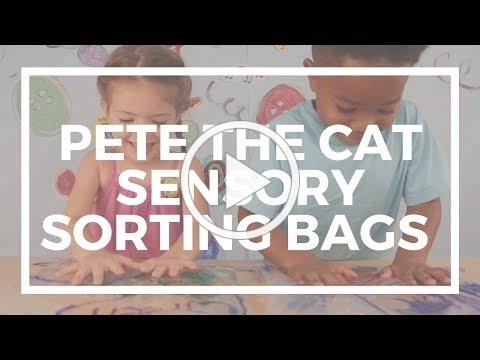 Pete the Cat Sensory Sorting Bags | Kaplan Early Learning Company