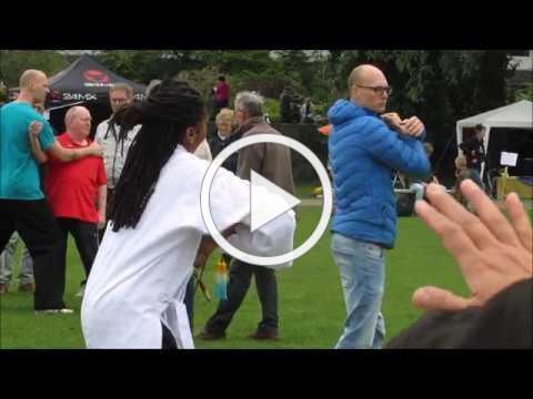 Wereld Tai Chi dag Zwolle 2018